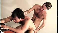After sucking his partner's cock he pounds his tight butt hole doggy style