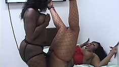 Huge black plumper lesbians lick some big twat and toy their holes