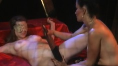 Gala Cruzs sits on the face of passionate girl with perky tits Krystal