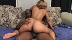 Curvy caramel girl welcomes a huge black rod in her cunt and sighs with pleasure
