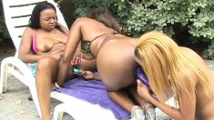Lesbian pussy party with ebony babes gets nasty and a lot of fun