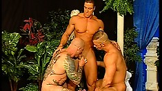 Three buff studs get naked and suck on that stiff man muscle