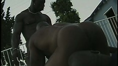 Three hot black studs with muscled bodies exchange oral pleasures by the pool