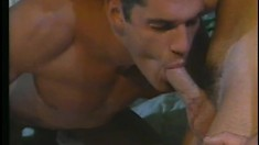 In a hotel room, two hot studs take turns sucking each other's dicks