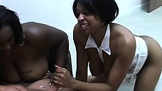 Chocolate ghetto bitches Kim and Ryder make a white cock feel good