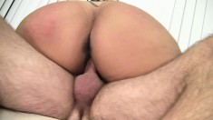 Chubby Tootsie wastes no time sucking his rod to get it hard to fuck her